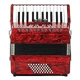 Acordeón De Piano Profesional 26 Teclas 48 Bajo Acordeón Instrumento Musical con Correa Guantes Bolsa para Principiantes Amante De La Música