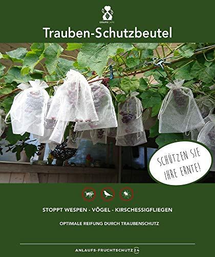 50 bolsas protectoras para uvas, tamaño: 30 x 20 cm, con cordón, para proteger contra avispas, aves, moscas de cerezas y otros insectos, bolsas de protección de fruta, bolsa de organza, color blanco