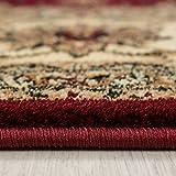 Teppich Orientteppich Wohnzimmer Klassische Optik Orientalisch Ornamente Rot, Maße:200 cm x 290 cm - 3