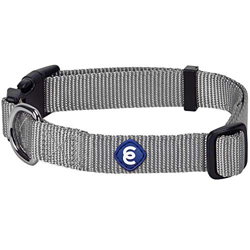 """Blueberry Pet Essentials 21 Colors Classic Dog Collar, Flint Gray, Large, Neck 18""""-26"""", Collars for Dogs"""