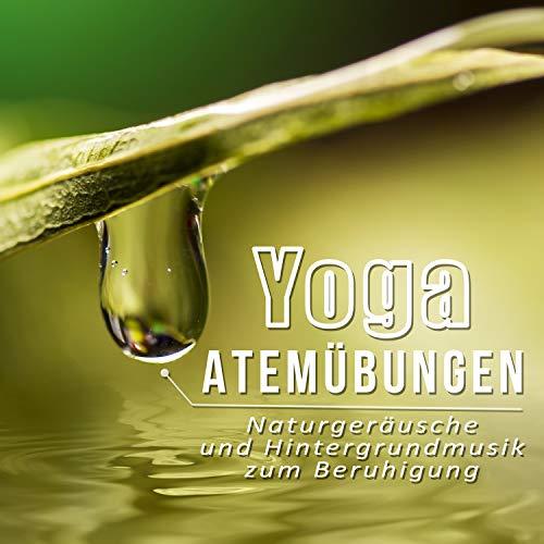 Yoga Atemübungen - Meditationsmusik für Achtsamkeitsübungen, Entspannungsmusik für Geistheilung, Naturgeräusche und Hintergrundmusik zum Beruhigung