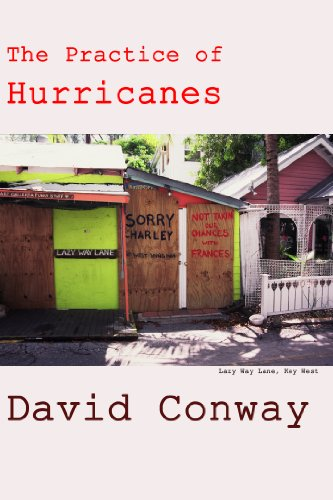 The Practice of Hurricanes (Ways to Be Alive Book 4)