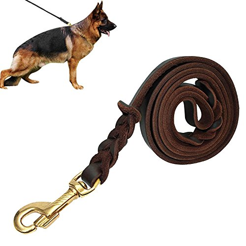 Linvei Hundeleine, Handgemachte geflochtenes braunes Leder Hundeleine - besonders elegant & praktisch - 1,5m Länge - Führleine -für Große,Mittlere und Kleine Hunde (Dunkelbraun)