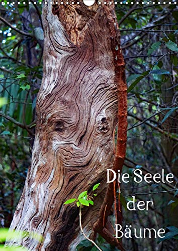Die Seele der Bäume (Wandkalender 2021 DIN A3 hoch)