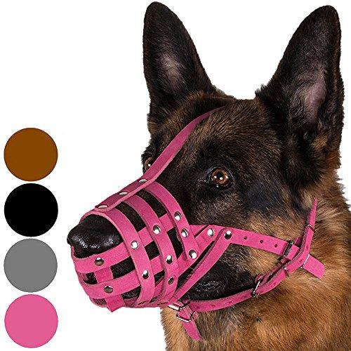 CollarDirect Dog Muzzle