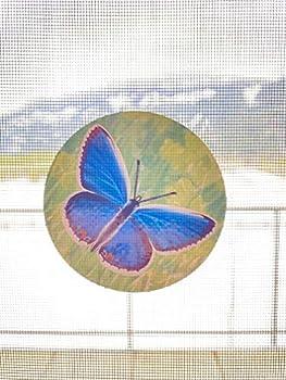 Retractable Screen Door Decals  Stickers  - 6 per Package - Keep Children Safe - Alert Birds Dogs Kids - Warn Protect Window Safety - Butterflies