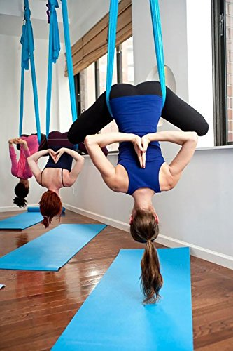 DASKING Premium Aerial Yoga Hammock Kit (Light Blue)