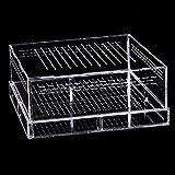Tortuga Aquarium Tank Tank Terraria Caja DE Insectos Insectos ARRPILES REPILES Caja DE CRISTANCIA Transporte Caja de alimentación Caja de plástico Transparente Hábitat de Reptil