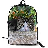 Cat Head Leaves Hide Mochila Escolar Personalizada Lunchbox Bag Set para Estudiantes y Adultos 16.5 X 12.5 X 5.5 Pulgadas
