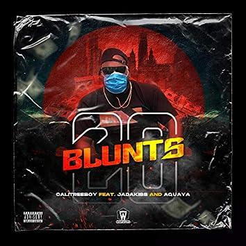 20 Blunts (feat. Jadakiss & Aquaya)