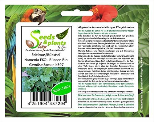 Stk - 1250x Stielmus Rübstiel Namenia EKO - Rübsen Bio Gemüse Samen K597 - Seeds Plants Shop Samenbank Pfullingen Patrik Ipsa