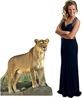 Jungle Safari Lioness Cardboard Cutout Standee Standup Prop Party Supplies Decorations Decor Backdrop Background