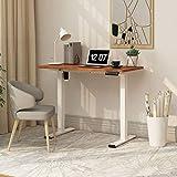 Flexispot E1 Elektrisch Höhenverstellbarer Schreibtisch mit Tischplatte...