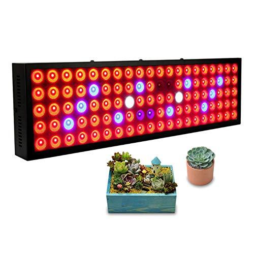 CGBF-plantengroeilamp plantenlicht plantenlamp LED 300W 100 LED geleid groeilicht met rood, blauw groeilicht voor kamerplanten groente bloemen groei lampen
