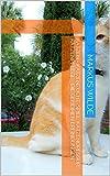 Katzen - Katzenzucht, Spiel, Katzendressur, Katzenpflege - Die geheimen Erfindungen