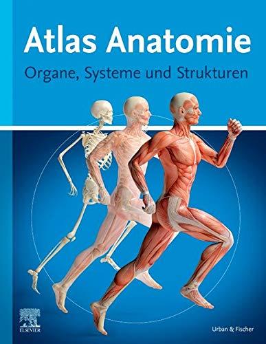 Atlas Anatomie für Laien: Organe, Systeme und Strukturen
