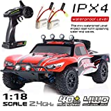 EXERCISE N PLAY RC Car, Remote Control Car, Terrain RC Cars, Electric Remote Control Off Road Monster Truck, 1:18 Scale...