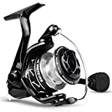 KastKing Valiant Eagle II Spinning Fishing Reel,Carbon Version,Size 3000