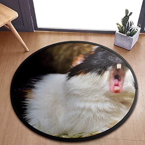 Alfombra redonda para niños, linda alfombra de conejillo de indias de animales, alfombra de juegos para el dormitorio, sala de juegos, decoración del hogar de 92 cm
