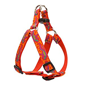LupinePet Originals 3/4″ Go Go Gecko 15-21″ Step In Harness for Small Dogs