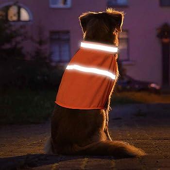 Orange Large NFZ Safety LG Org Dog Not Gone No Fly Zone Safety Vest for Dogs