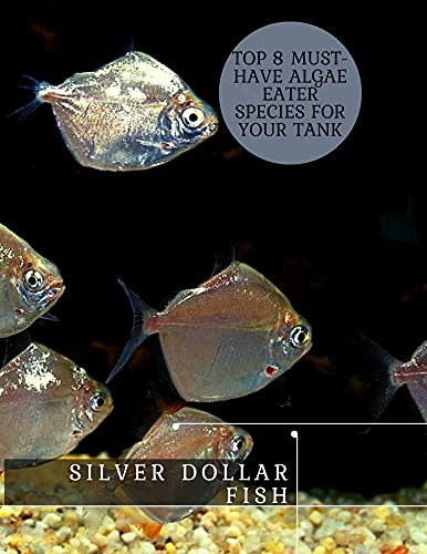 Silver Dollar Fish: Top 8 Must-Have Algae Eater Species For Your Tank (English Edition)