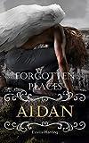Forgotten Places: Aidan (Band 4)