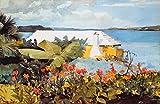 Feeling at home ESTRILLADO-LIENZO-Flor-Jardín-y-Bungalow-Bermuda-Homer-Winslow-Costa-Fine-Art-impresión-enmarcado-en-madera-bars-cm_27x42_in