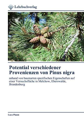 Potential verschiedener Provenienzen von Pinus nigra: anhand von baumarten spezifischen Eigenschaften auf einer Versuchsfläche in Melchow, Eberswalde, Brandenburg