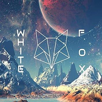 Beyond White Fox