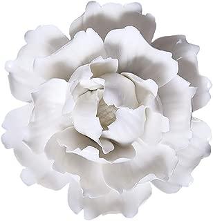 Best porcelain wall art Reviews