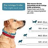 Zoom IMG-1 pettec collare per cani trioflex