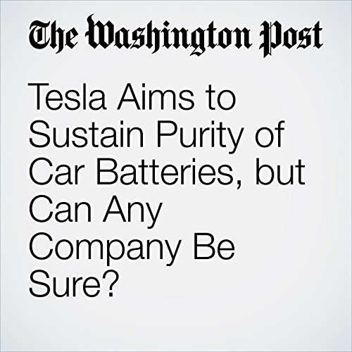 Tesla Aims to Sustain Purity of Car Batteries, but Can Any Company Be Sure? copertina