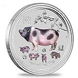 farbig coloriert Lunar II Schwein Pig 2019 1 Unze Silber Münze Silbermünze in Kapsel