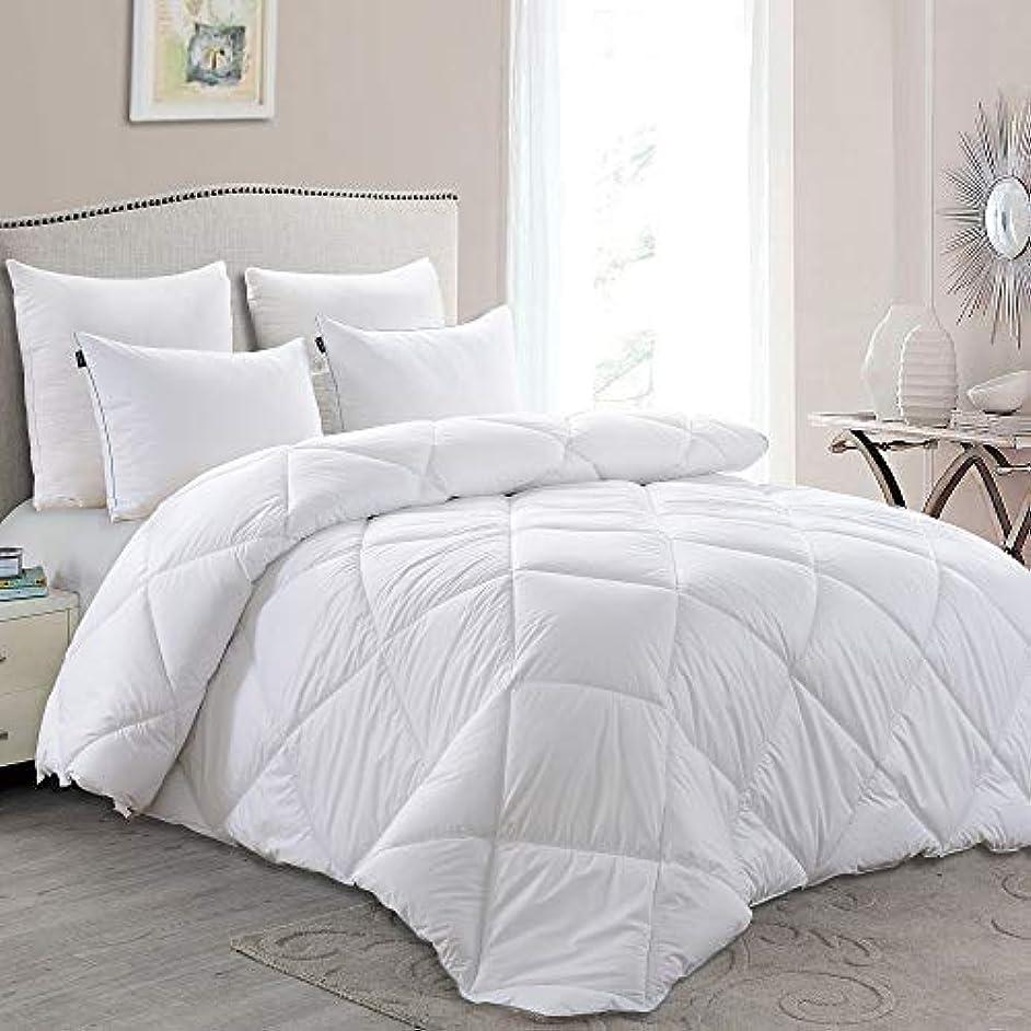 Basic Beyond Lightweight Down Comforter (Queen) - Summer Weight Down Duvet Inserts with Corner Tabs