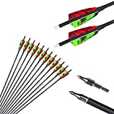 23 Inch Arrow 500 Spine Arrow Target Practice Arrow Hunting Arrow Carbon Arrows Compound Bow Recurve Bow Adult Youth Archery Indoor Outdoor Shooting Field Tip