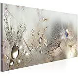 murando 120x40 cm - 1 pezzo Stampa su tela in TNT XXL Immagini moderni Murale Fotografia Grafica Decorazione da parete Fiori Natura Grigio Soffione b-C-0169-b-b