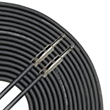GLS Audio 25 feet Speaker Cable 16AWG Patch Cords - 25 ft 1/4' to 1/4' Professional Speaker Cables Black 16 Gauge Wire - Pro 25' Phono 6.3mm Cord 16G - Single