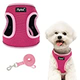 PUPTECK Soft Dog Harness and Leash - Padded Breathable Mesh Pet No Pull Harness, Reflective Comfort Puppy Vest Harness for Small Medium Dogs Outdoor Running and Training