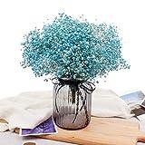 JYXJJKK Gypsophila siemprevivas,Ramo seco para la decoración casera-Azul