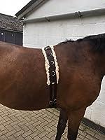 Training roller horse cob pony
