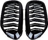 Zaaqio Accesorios para Rejilla de Coche Rejilla de Parachoques Delantero ABS 2 Rejilla de riñón Frontal Negra Brillante Plana , para BMW 5 Series M5 G30 G31 520i 530i 540i 2017~2019