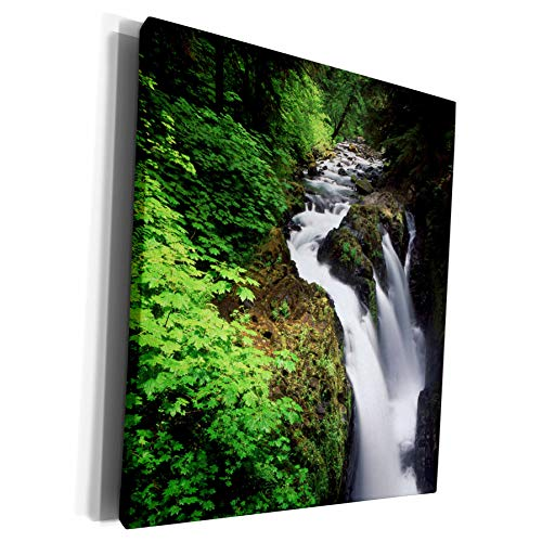 3dRose Danita Delimont - Waterfalls - Sol Duc Falls, Olympic National Park, Washington, USA - US48 AJE0040 - Adam Jones - Museum Grade Canvas Wrap (cw_147744_1)