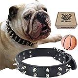 RAINSGIFT Collare di cane per i cani di media grandezza collari cain piccola taglia collari a strozzo per cani piccoli per bulldog / Labrador / Pastore tedesco / pugs, piccolo, nero