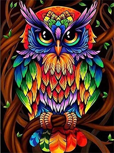 5D DIY Colorful Owl Diamond Painting Kits for Adults and Beginner Round Full Drill Embroidery Paintings Rhinestone Pasted Diamond Pictures Arts Craft Canvas for Home Wall Decor Gift 11.8×15.7Inches