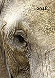 Kalender 2018 - Elefant Eye: DIN A5, 1 Woche pro Doppelseite