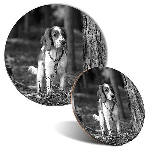 BW - Alfombrilla de ratón y posavasos, diseño galés Springer Spaniel perro cachorro 20 cm y 9 cm para ordenador y portátil, oficina, regalo, base antideslizante #37758