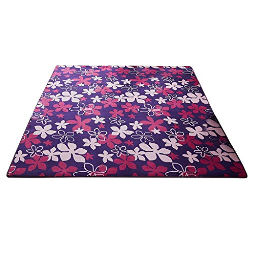 Iusun Non-Slip Thick Coral Fleece Foot Carpet Rectangle Office Door Floor Mat Home Entrance Hall Rug Cushion Carpets Kitchen Bedroom Bathroom Home Dining Living Room