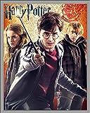 Harry Potter - 7 - Trio - Mini Poster Plakat Druck -