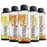 DERBE FRESH Sport Getränkekonzentrat - Probierset 1 - 5 Sorten - 250 ml (Zuckerfreier Getränkesirup, Vital Drink, Sodastream Sirup Mineraldrink 1:80)
